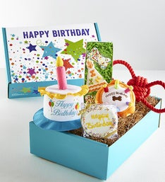 Max  Milo Happy Birthday Pooch Dog Treats Box