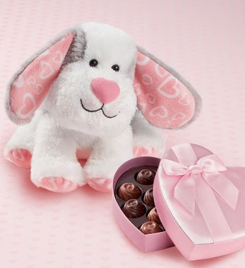 Lotsa Love Sweet Puppy with Chocolate