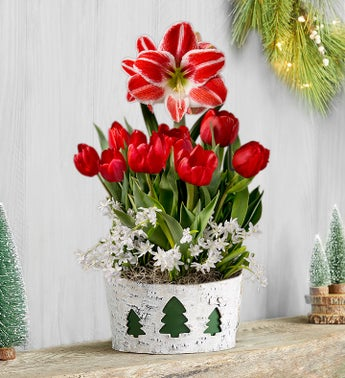 Holiday Charm Bulb Garden