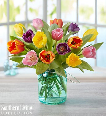 Assorted Tulips by Southern Living