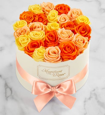 Magnificent Roses Preserved Citrus Roses