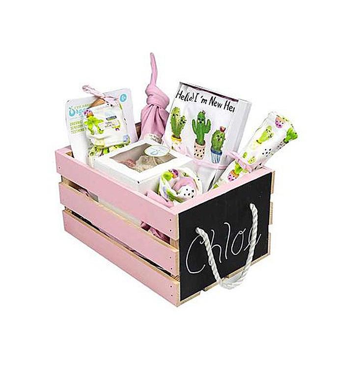 Baby Girl Gift Basket Baby Cactus