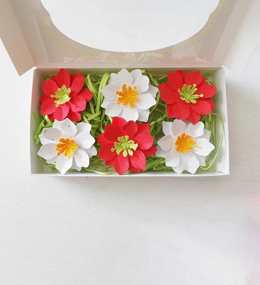 Seeded Paper Flower and Herb Set
